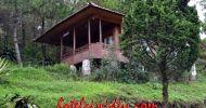 Meranti Villa Patuha PENGINAPANCIWIDEY.COM