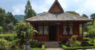 Ingin BookingMau Sewa Hotel atau Penginapan Super Murah di Ciwidey Bandung Selatan