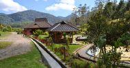 Penginapan Hotel Murah Di Ciwidey – PenginapanCiwidey.Com