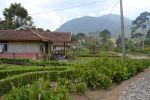Booking Untuk Keluarga dari Kendal Penginapan Super Murah di Ciwidey