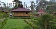 Ingin Sewa Hotel Di Soreang Ciwidey Murah Bagus Untuk Keluarga Kecil dari Ponorogo