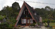 Booking Untuk Keluarga dari Semarang Hotel atau Penginapan Untuk Backpaker di Ciwidey