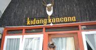 Sewa Untuk Keluarga dari Garut Penginapan Murah Banget di Ciwidey Bandung